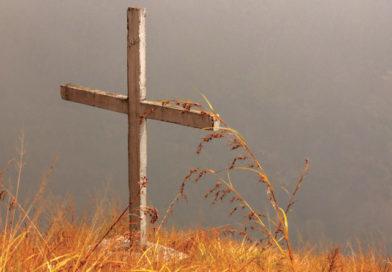 വെള്ളാപ്പള്ളി നടേശനും മൂന്നാറിലെ കുരിശും